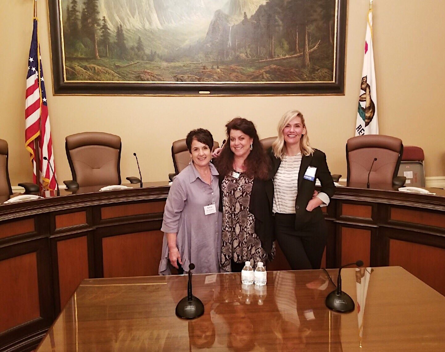 Experienced LTSS advocates Lorna Van Ackeren, Debbie Toth and Amber Christ walked the halls of the Capitol along with many first-time participants